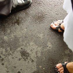 Foto: FreeImages.com/Elvis Santana